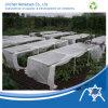 Vegetable Cover를 위한 Spunbond Nonwoven Fabric