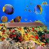 De LEIDENE Lichten van het Aquarium (hm-72-24)