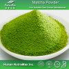 El 100% Matcha natural Powder (acoplamiento del paso 80 del 100%)