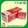 Batteria a secco di R6p Battery/AA