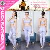 Pantaloni caldi di yoga di forma fisica delle più nuove signore che eseguono i pantaloni 2017