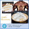 Músculo CAS 15262-86-9 del aumento de Isocaproate de la testosterona del esteroide anabólico