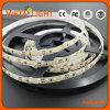 Indicatori luminosi di striscia economizzatori d'energia di DC12V SMD LED per i cinematografi