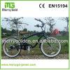 26  36V 250W 7 Geschwindigkeits-klassischer Strand-Kreuzer-elektrisches Fahrrad