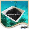 Естественная выдержка Seaweed органического удобрения без загрязнения