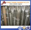 250 x 250 acoplamiento de alambre de acero inoxidable de Meshes/0.06mm Ss304