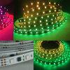 DMX512夢のストリップ、高品質IP68のプールLEDの棒状螢光灯による照明