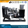 Service global con 24kw Diesel Engine Generator