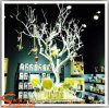 Shop Decoration (WT9)를 위한 주문을 받아서 만들어진 Artificial Dry Tree Branches