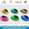 Efectos de escritorio ovales de la oficina de la forma del imán de los colores transparentes plásticos del clip