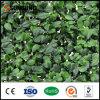 인공적인 산울타리 담 잎 양탄자 정원 훈장