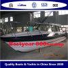 Barco de Bestyear del pasajero 960