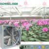 Windows montou o ventilador de refrigeração para a orquídea da borboleta que planta a estufa