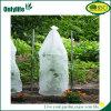 Couverture diplôméee par BSCI d'usine de qualité d'Onlylife pour la fleur d'arbres