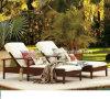 Lounger мебели /Pool стула пляжа стула салона (HY106)