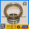 Rodamiento de rodillos cilíndrico de la jaula de cobre amarillo (NU1009M)
