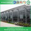 야채 설치를 위한 튼튼한 필름 지붕 유리벽 온실