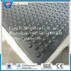 Livestock Stable Rubber Sheet, Anti - Fatigue Cow Rubber Sheet (GS0506)