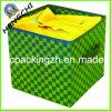Cadre d'organisateur de ménage de DIY Shirt/Dress/Toy (HC0076)