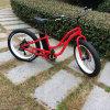 Bicicleta elétrica gorda do pneu 48V 500W da neve