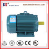 Ys Serie Röhrenelektrischer Wechselstrom-asynchroner Kurzschlußmotor