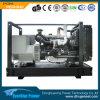 Conjunto de generador eléctrico del gasoil 65kVA de la fábrica del OEM de China