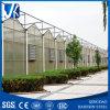 가벼운 강철 짜맞추기 목조 가옥 야채 헛간 Jhx-Ss3009-L
