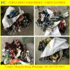 Дешевый человек & ботинки второй руки повелительницы Used Сандалии (FCD-005)