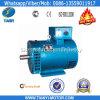 St Evenwichtige Alternator van Rotoren voor Diesel Generator