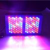 가득 차있는 스펙트럼 LED는 가벼운 600W Veg를 증가하고 개화한다