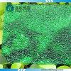 Лист PC диаманта поликарбоната зеленого цвета выбитый