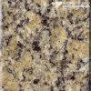 Pulido Santa Cecilia Granito Azulejos de suelo y de pared ( MT029 )