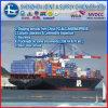 이슬라마바드에 Professiona LCL Cargo Exporters From Dongguan