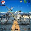 Vélo électrique bon marché hydraulique de bonne qualité de bâti d'alliage de suspension