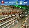 Il pollame galvanizzato caldo della rete metallica dello standard internazionale mette in gabbia la strumentazione