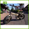 Schöner fetter Reifen-elektrisches faltendes Fahrrad des Entwurfs-kleiner Rad-26