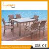 Reeks van de Eettafel van de Rotan van het Meubilair van Foshan de Openlucht In het groot en Vastgestelde van de Koffietafel van de Stoel