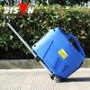Bisonte 3kw generador del Portable del inversor de Digitaces de la gasolina de la garantía de 1 año