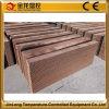 Jinlong Geflügel/Industrie/Gewächshaus-Luftkühlung-Systems-Verdampfungskühlung-Auflage mit Cer-Bescheinigung