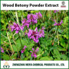 10:1 en bois normal de 5:1 d'extrait de poudre de Betony d'origine de la Chine, 20:1