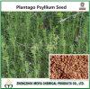 10:1 dell'estratto della polvere del seme del plantano del rifornimento della fabbrica, 20:1