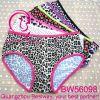 2014 nuovo Fashion Super Fancy Summer variopinto Panties Collection per la ragazza