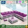 屋外および庭の余暇の藤のソファー(TG-004)