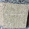 Telha martelada Bush dourada chinesa do granito da grão para a parede /Floor/Sink