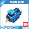 Motore caldo della gabbia di scoiattolo di serie 90kw di vendita Y2