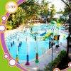 Vario equipo del parque del agua de la diversión de las atracciones del agua para la venta