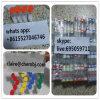 Hormone Ipamorelin 2mg CAS 170851-70-4 de polypeptide de 99% pour le culturisme et la perte de poids de muscle