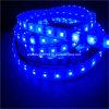 SMD 2811 60LEDs LED Stirp Licht