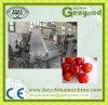 Machine de piqûre de corrosion de cerise pour le traitement de cerise