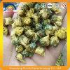 Китайский высушенный чай цветка бутона хризантемы